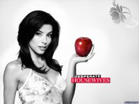 10373desperatehousewives4.jpg